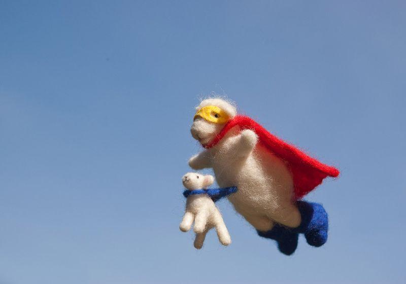 Supersheep7