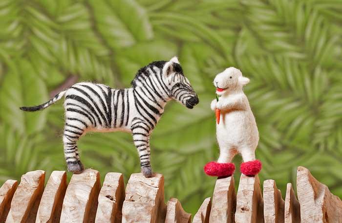 Zebra1sm